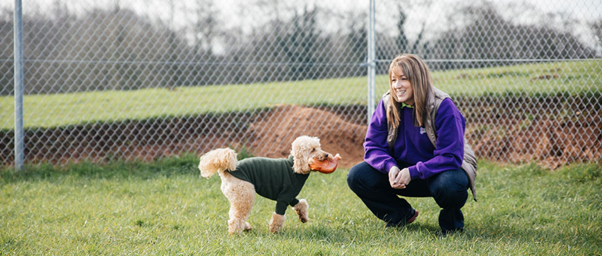 Other Pet Services in Cheshire